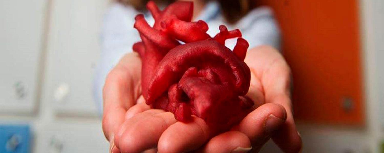 coração 3D manufatura aditiva